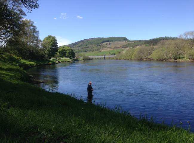 The River Tay Makes A Fantastic Scottish Salmon Fishing Holiday Destination